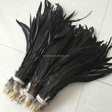 wholesale 40-45cm natural black rooster tail feather