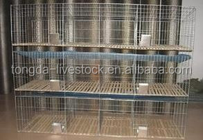 high efficiency galvanized metal cage with rabbit water feeder ISO certificate rabbit cage building materials