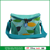 Double Compartment Lunch Cooler Bag Plastic Cooler Shopping Bag
