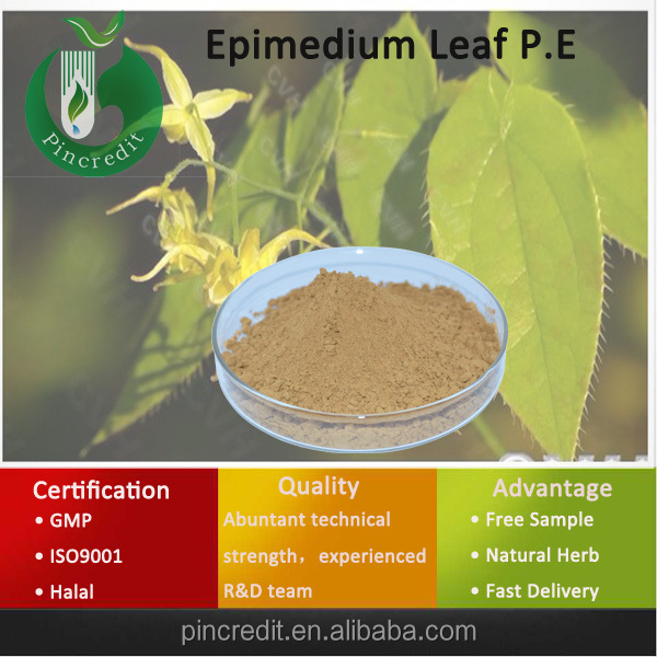 Epimedium/Epimedium Extract/Natural Icariin/Epimedium Leaf P.E