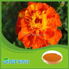 factory supply top quality and best price xanthophylls lutein powder