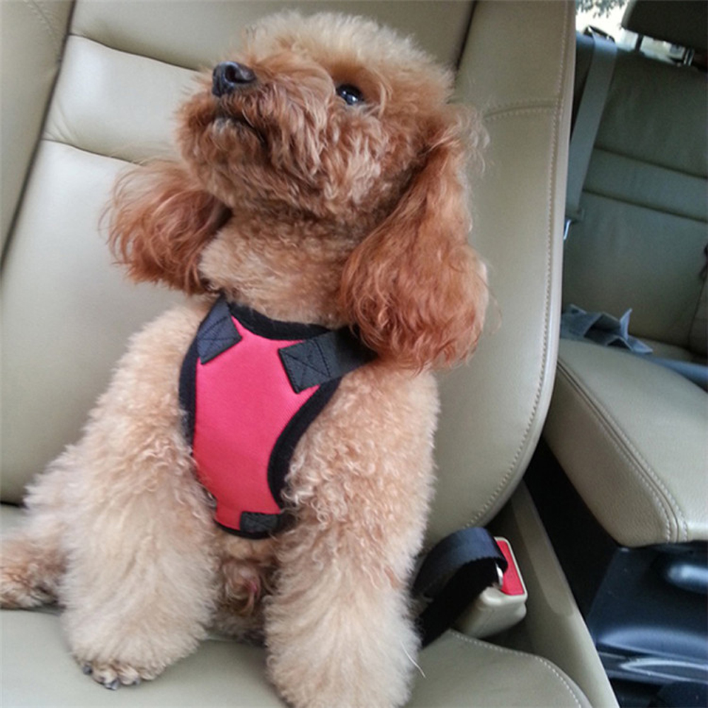 Safety Pet Car Seat Belt Harness Dog Leash Auto Traction Lead Collar