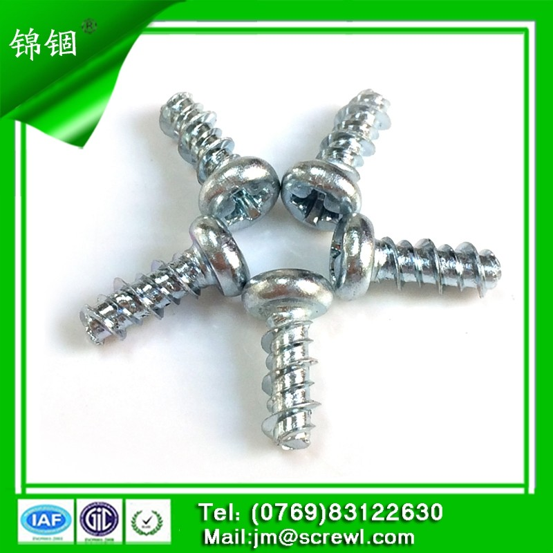 hot dip galvanized phillips pan head self tapping stainless steel screw