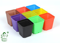 PP plastic square small nursery pot