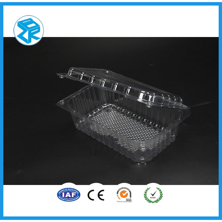 Promotion Item Platic Box For Fruit Packaging Hotsell Dried Plastic