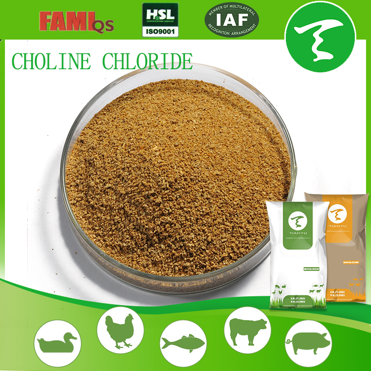 Poultry factory sell feed additive Choline Chloride 60% for animal feed