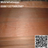 1220x2440mm red pencil cedar wood veneer