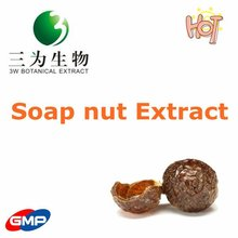 100% Natural Soap nut Extract from GMP factory