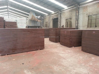 Chinese film faced plywood from Haiyang wood different types