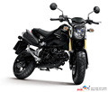 MSX 125CC 150C CHEAP SALE DIRT BIKE MOTORCYCLE ZF125 MAX