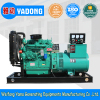 China Manufacture Permanent Magnetic 30kw Generator
