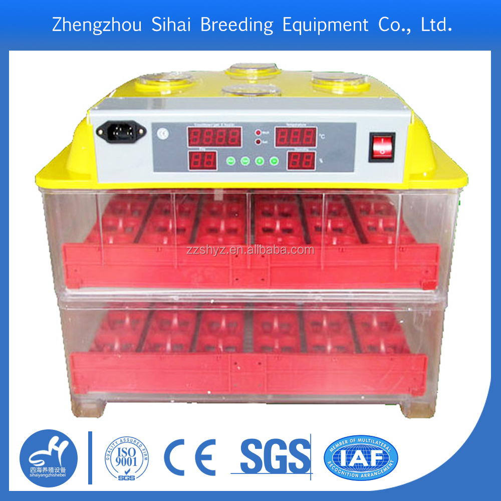 New Design Automatic Broiler Chicken Eggs For Hatching
