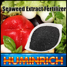 Huminrich Kelp Source Super Organic Fertilizer SY1001 Dried Seaweed Fertilizer Powder