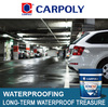 Carpoly Anti-seepage treatment for the concrete building wall, IJFS909, Long-term waterproof treasure
