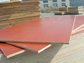 12mm wooden grain color furniture grade melamine laminated coated plywood