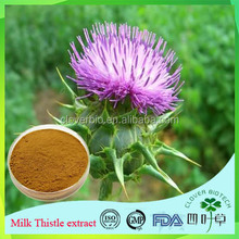 holy thistle thorn extract 20% silybin in stock