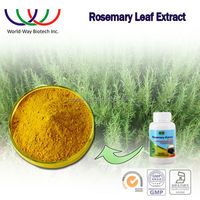 rosemary extract,free sample China supplier antioxidant for fish & meat nature preservative rosmarinic acid 25%
