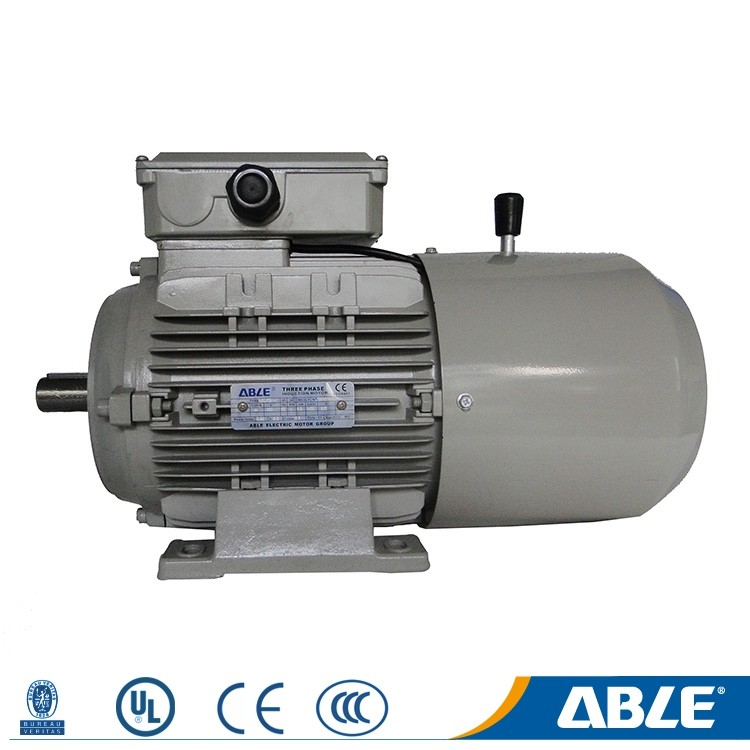 IP55 MSEJ series asynchronous high quality 220 volt ac chinese electric motor