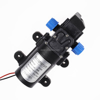 2016 Best selling DC 24V 6L/min 80W Micro Diaphragm High Pressure Water Pump Automatic Switch