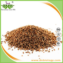 Natural soluble in water Cuscuta Seed Extract Chinese Dodder Seed Extract
