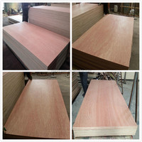 Poplar Main Material and Indoor,construction,furniture,decoration,packing Usage Okoume Plywood/Bintangor Plywood for Decorate