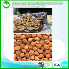 100% natural and healthy bitter apricot seeds powder/apricot puree concentrate powder/apricot kernels extract