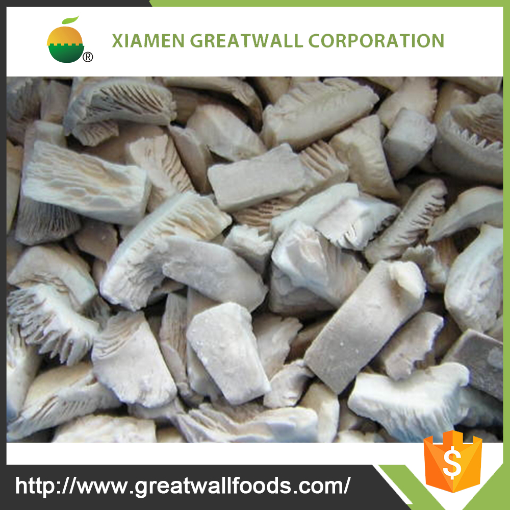 High quality Oyster mushroom price