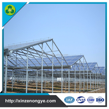Commercial Solar Hydroponic Nursery Greenhouse