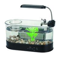 Supply table basse mini aquarium fish tank