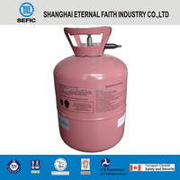 SEFIC Brand Good Quality Holiday Celebrate Balloon Helium Gas Cylinder