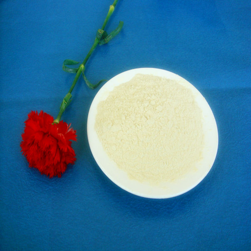 High quality Soy Isolate Protein Powder with best price