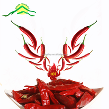 NEW FRESH high quality dry red chilli