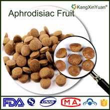 Private Label Lithocarpus Pachylepis Extract Kidney Tonic Herbal Pill