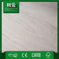 Best Quality B/BB Eucalyptus Commercial Plywood