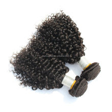 Wholesale tianrun factory price kinky curly virgin south american hair