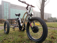 Electric tricycle 500W Fat Tire Cargo fashion three wheel with Pedal
