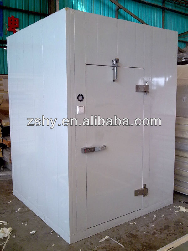 Polyurethane panels cold room with monoblock compressor
