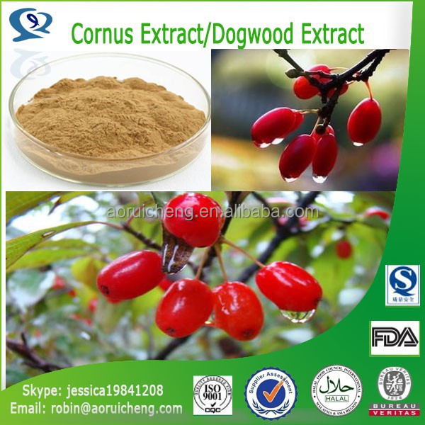 New best selling nature dry dragon fruit extract