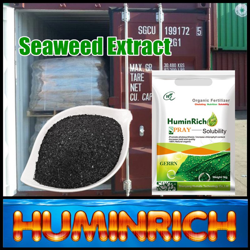 Huminrich Shenyang Rich In Organic Matter Seaweed Extract Vegetable Garden Fertilizer