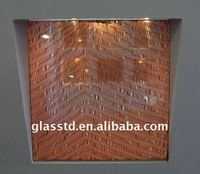 Red laminated glass wired glass for shower doors