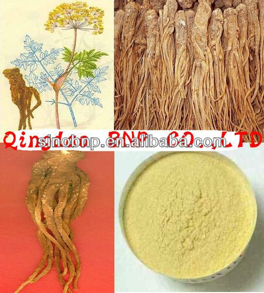 GMP Manufacturer Supply Natural Ligustilide Angelica Dongquai Extract