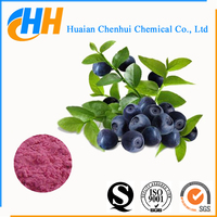 Acai berry extract powder with high quality and best price