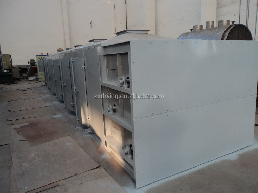 fuit and vegetable belt drying equipment
