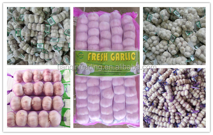 2017 fresh garlic price