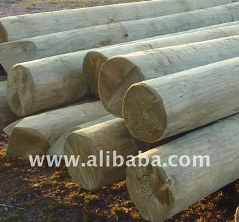 Wooden impregnated poles for energy and telecommunication overhead lines