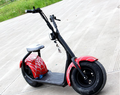 1000w New Fashion Electric Scooter Two Wheel Mobility Scooter