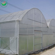 Long service life multi span agricultural plastic film greenhouse