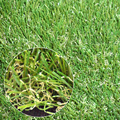 China artificial grass yarn manufacturer,plastic lawn edging artificial green fence