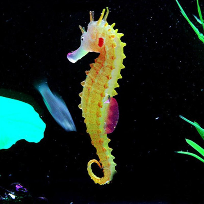 Deep Sea Toys Glowing Sea Horse Toys on Sale