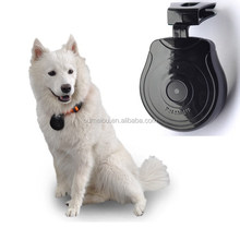fashion digital cat camera for your lovely pets